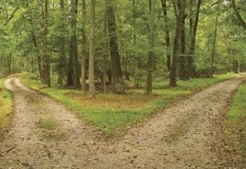 2dua-jalan-pilihan