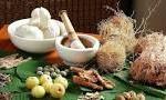 herbal dan obat